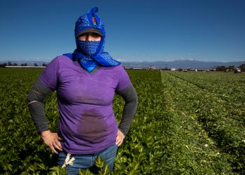 Juana Gonzalez, 28, has been an agricultural laborer for 10 years. She worries about Covid-19 Coronavirus, especially working so close to other workers all day long without protection. (Photo by Brent Stirton/Getty Images.)