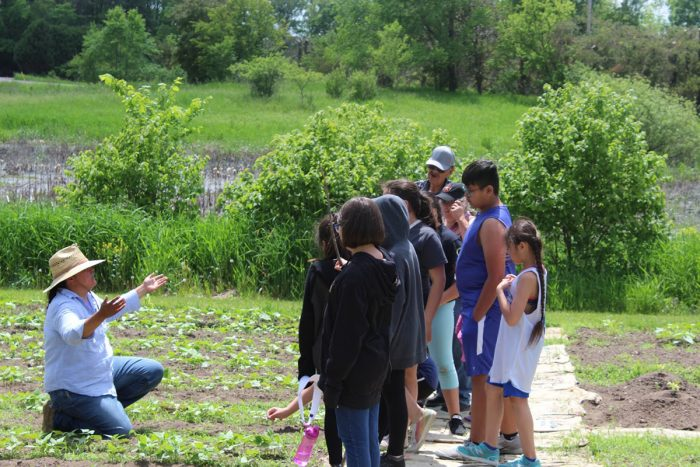 Jessika Greendeer teaching kids in the DWH Seed Garden. (Photo courtesy of Dream of Wild Health)