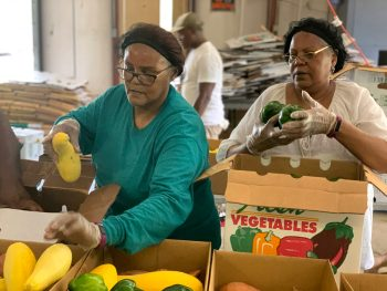 Workers packing produce for delivery. (Photo courtesy of the Federation of Southern Co-ops)