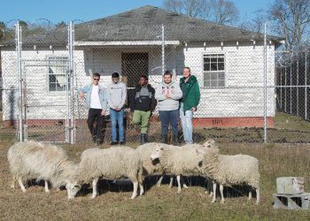 Logan Stern, Robin Patel, Terrence Smith, Michael Adyson Strickland, and Noran Sanford (left to right) stand in the pasture they've created outside the prison yard at the Scotland Correctional Center, which was decommissioned in 2001.