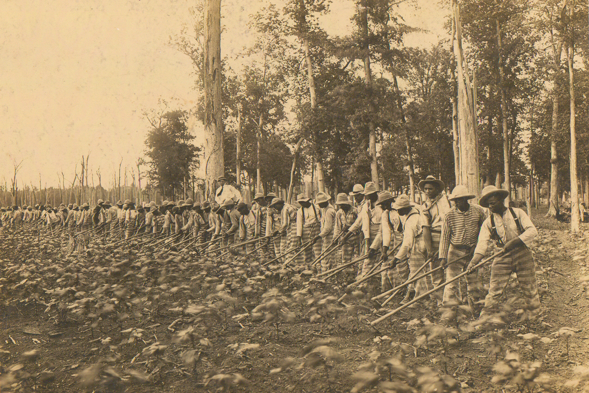 Parchman Penal Farm. Male prisoners hoeing in a field in Mississippi. (Public domain photo by the Mississippi Department of Archives and History)