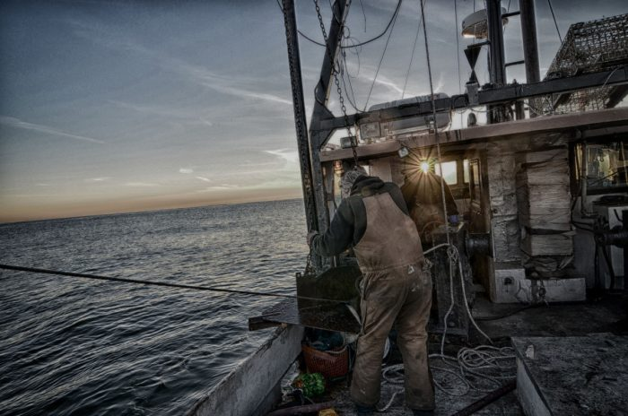 Captain Garry Libby doing a test tow for cold-water shrimp. The fishery collapsed in 2014 and was shut down. (Photo credit: Ben Martens)