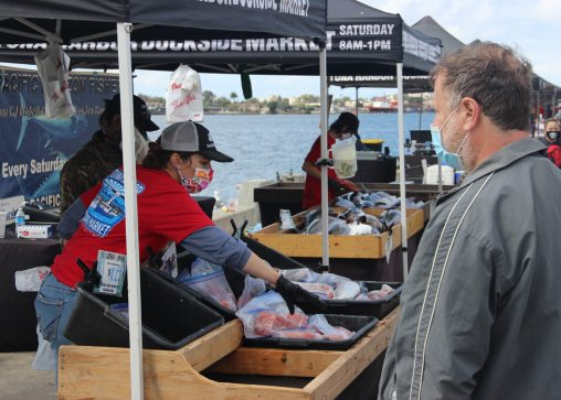Freshly caught fish for sale at the Dockside Harbor market. (Photo by Mark Armao)