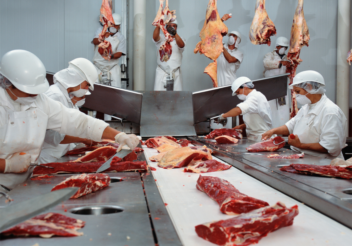 workers cutting meat in a slaughterhouse