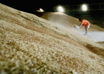 a worker importing wheat that has been certified under usda organic standards