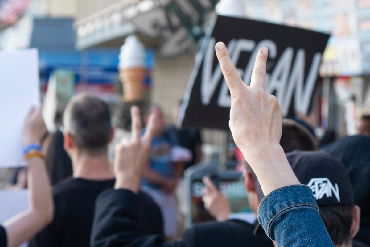 Whtie vegans protest outside an ice cream shop in Venice Beach, California