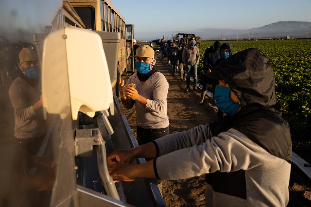 farmworkers wash hands in the fields to try to prevent the spread of coronavirus