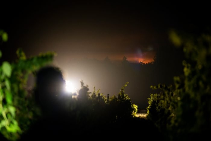 Vineyard workers harvest grapes at a winery in Sonoma County's Dry Creek Valley as the Walbridge Fire burns one mile away. Vineyard workers, who are often exposed to environmental hazards, like pesticides, are now facing a pandemic that they are disproportionately affected by, wildfires, smoke, and a heat wave.