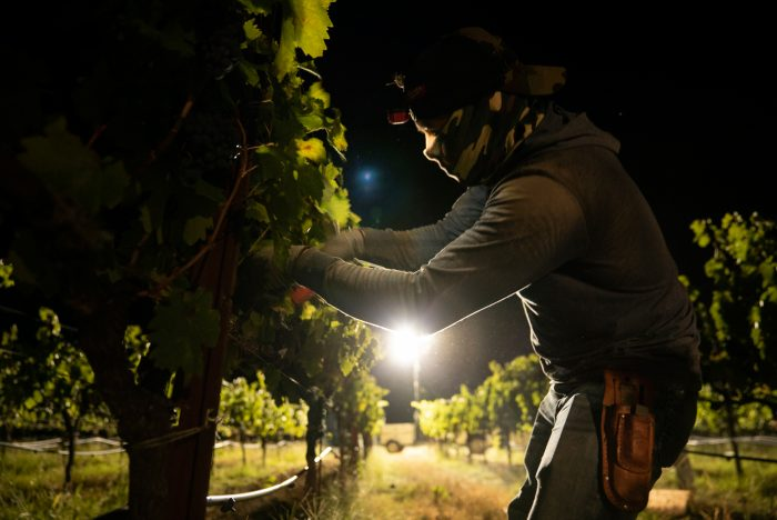 Sonoma County's agricultural commissioner issued almost 300 permits to businesses to be able to continue functioning behind evacuation zone lines, putting vineyard workers without the necessary protective equipment at risk.