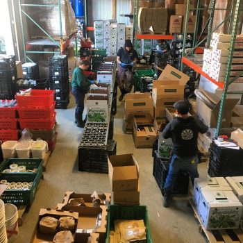 Sunderland Farm co-op filling first CSA order