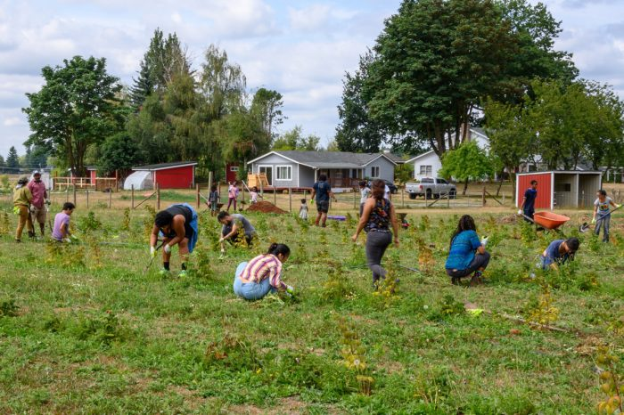 A group of people work in the fields at Ayeko Farm. (Photo courtesy of Ayeko Farm)