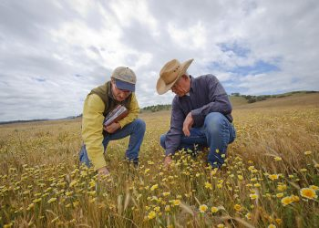Steven Sinton Ranch in Templeton, California. Photo Credit: USDA NRCS