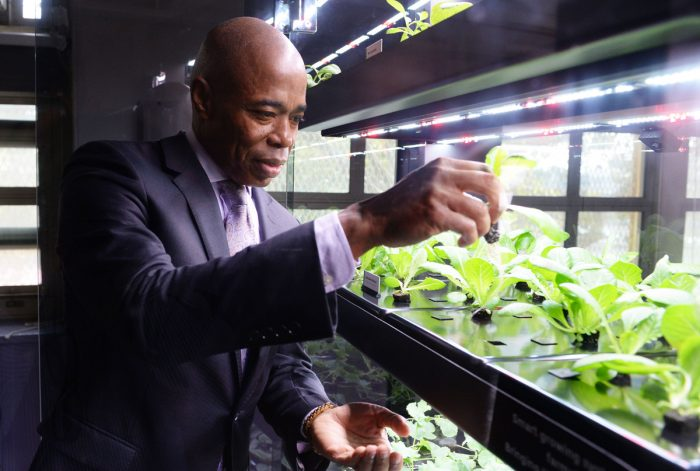 Brooklyn Borough President Eric Adams visits the Farmshelf at the Brooklyn Democracy Academy. (Photo credit: Eugene Resnick, Brooklyn Borough President's office)