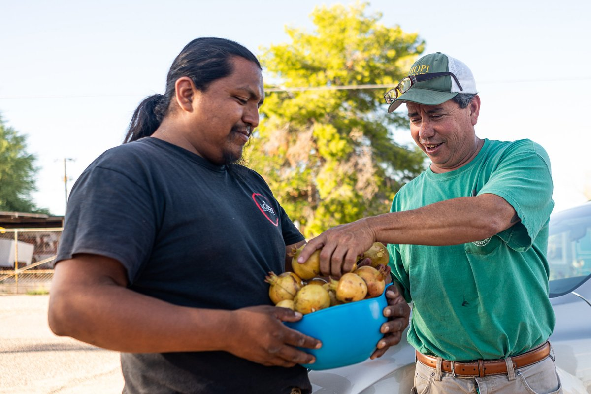Two Indigenous farmers, from Ajo Sustainable Agriculture and Ramona Farms, gather fruit.