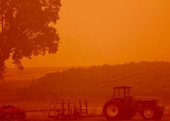West Coast wildfires turn the skies orange over the Iverson Famil Farms vineyards. (Photo courtesy of Iverson Family Farms)