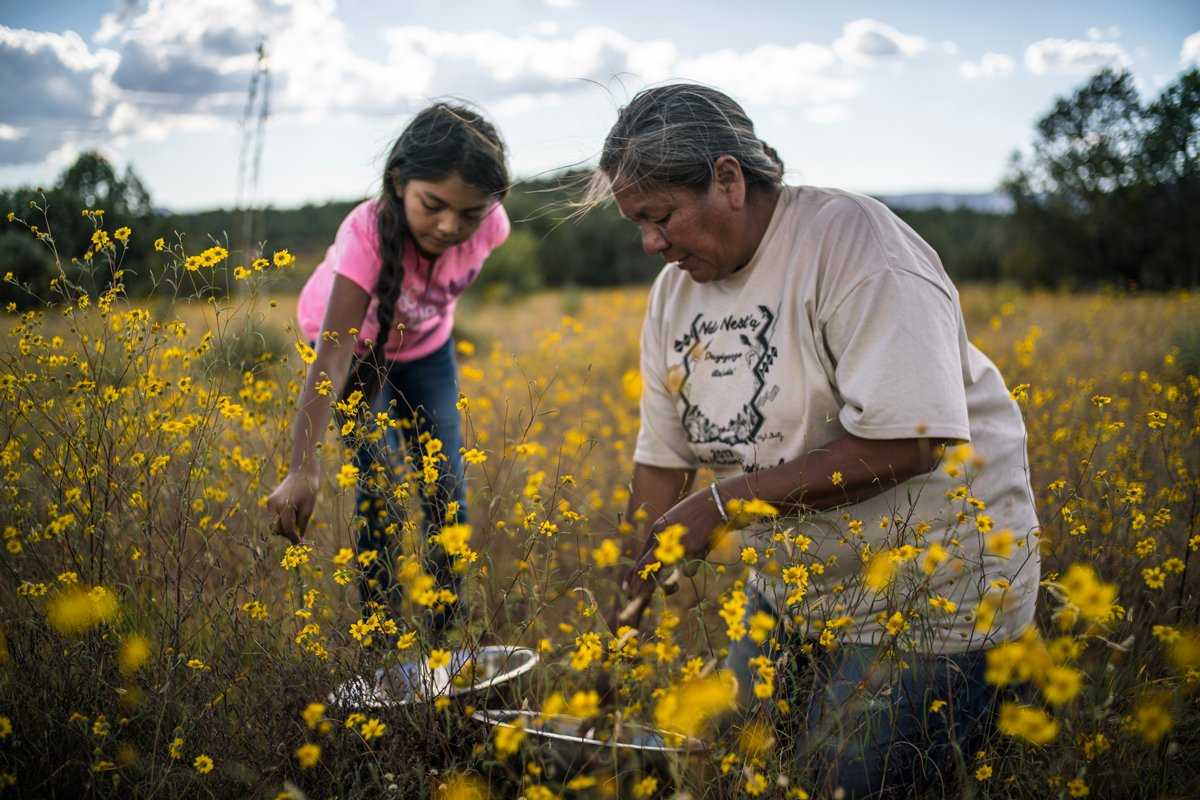gathers wild amaranth seeds with her niece. (Photo credit: Renan Ozturk)