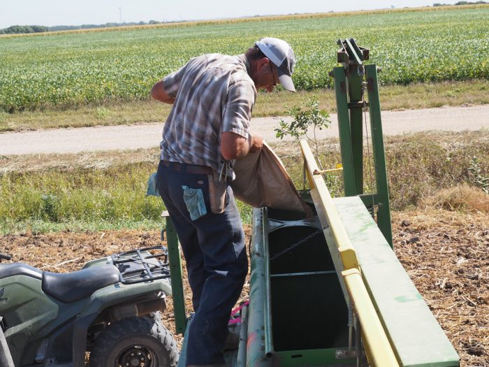 Filling a seeder with Kernza seed.
