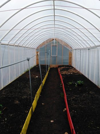 Inside the Virgil's hoop house.