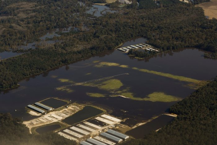 North Carolina swine facilities flooded during Hurricane Matthew. (Photo by Rick Dove of the Waterkeeper Alliance.)