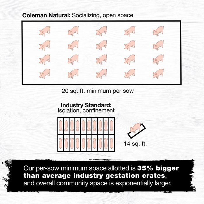 A graphic showing how Coleman allows for open space in their pig housing.