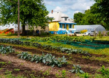 The Oakland Avenue Urban Farm. (Photo courtesy of Planet Detroit)
