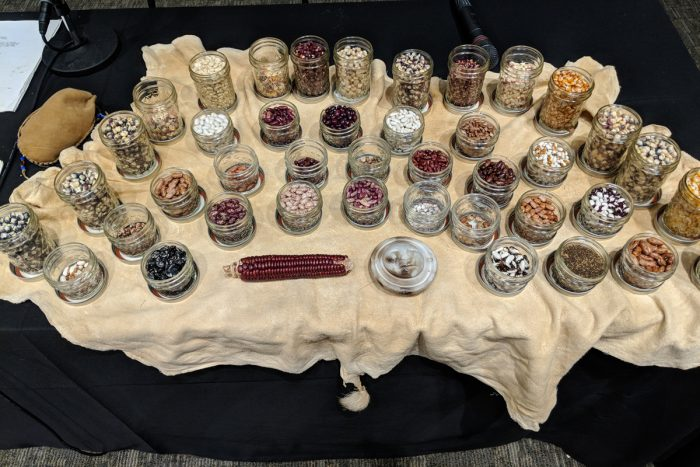 A table full of different varieties of native seeds. Photo courtesy of Rowen White.