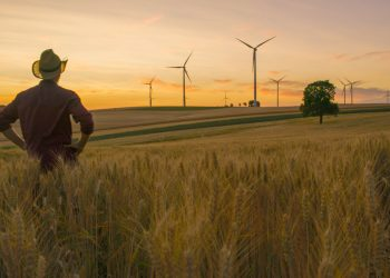a farmer stares at windmills on his farm as he thinks about climate change and regenerative agriculture