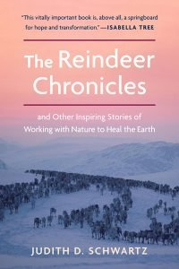 reindeer chronicles cover