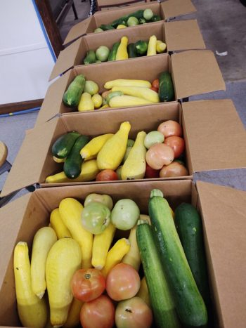 Fresh produce boxes provided by the Federation as part of its USDA Food Box program await donation in south Georgia. (Photo courtesy of the Federation of Southern Cooperatives)