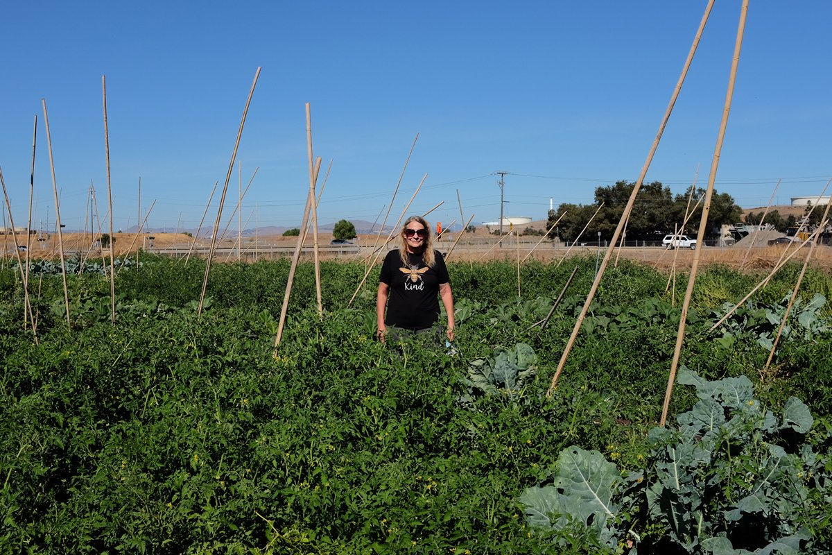 Carolyn Phinney stands in the field at CoCo San Sustainable Farm.