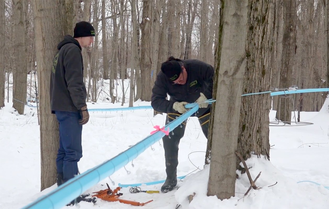Tending the new syrup lines on Allen Gage's (left) family farm. (Photo courtesy of Seneca Media & Communications Center)