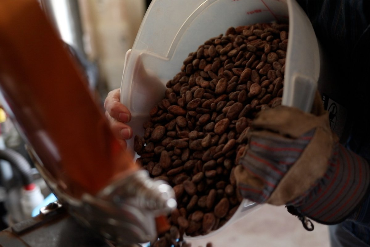 pouring cacao beans into a grinder. Photo credit: Mizzica Films