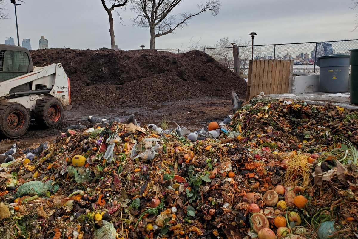 Food scraps at the Lower East Side Ecology Center's compost yard.