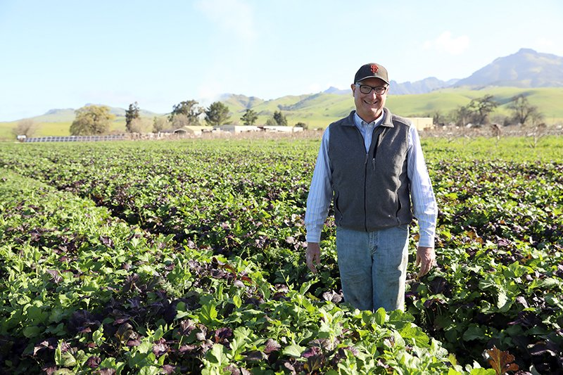 Farmer Phil Foster stands in his no-till organic field. (Photo credit: Chico State Center for Regenerative Agriculture)