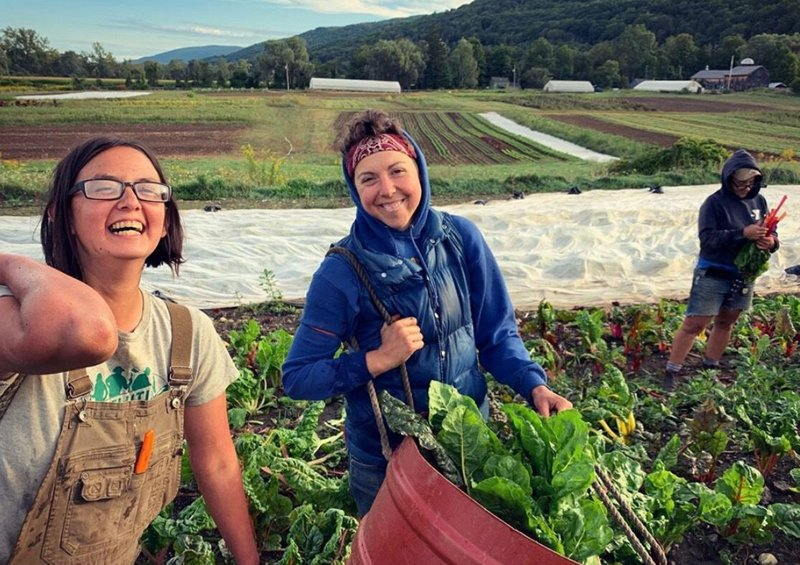 Queer Farmers at Rock Steady