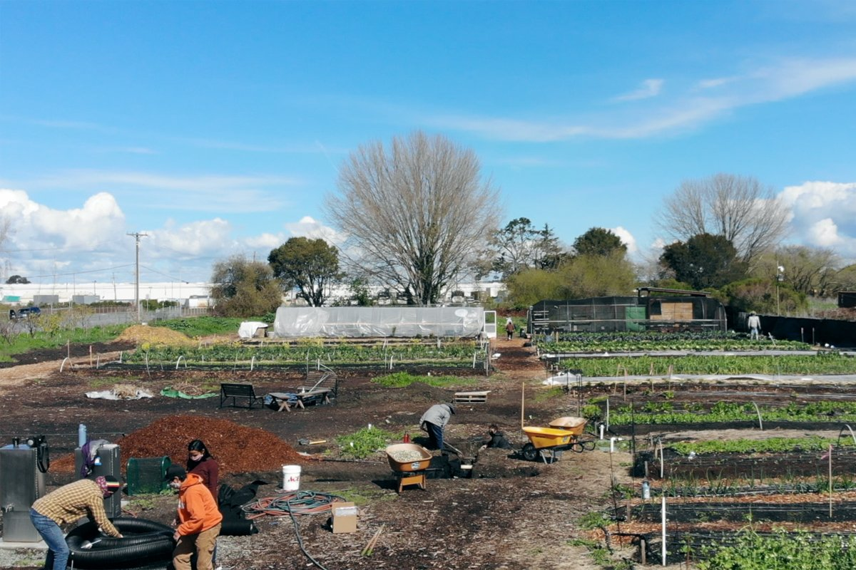 An overhead view of Urban Tilth's North Richmond Farm.