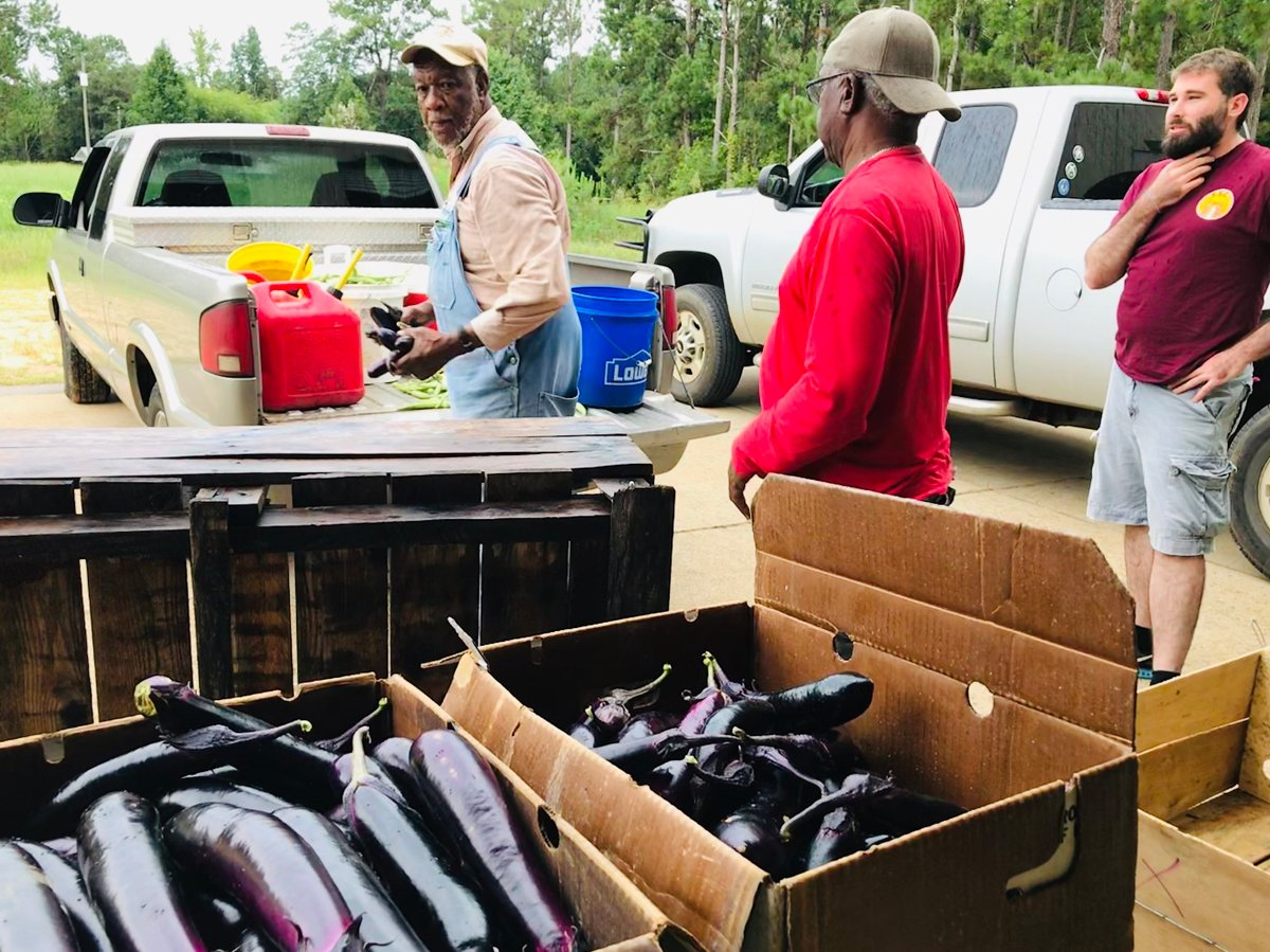 Ben Burkett, a farmer from Petal, Mississippi, and Mississippi state coordinator with the Federation of Southern Cooperatives, prepares to deliver produce to market. (Photo credit: Northwest Altantic Marine Alliance)