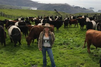 Doniga Markegard standing with her grazing cattle. (Photo courtesy of Markegard Ranch)