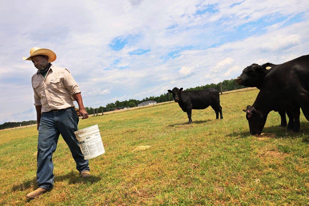 Handy Kennedy, founder of AgriUnity cooperative, feeds his cows on HK Farms on April 20, 2021 in Cobbtown, Georgia.