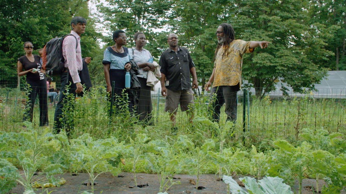 From right, Malik Yakini teaches Peter Mazunda, Anita Chitaya, Esther Lupafya and Raj Patel (and a bystander) about irrigation on D-Town Farm, Detroit, Michigan.