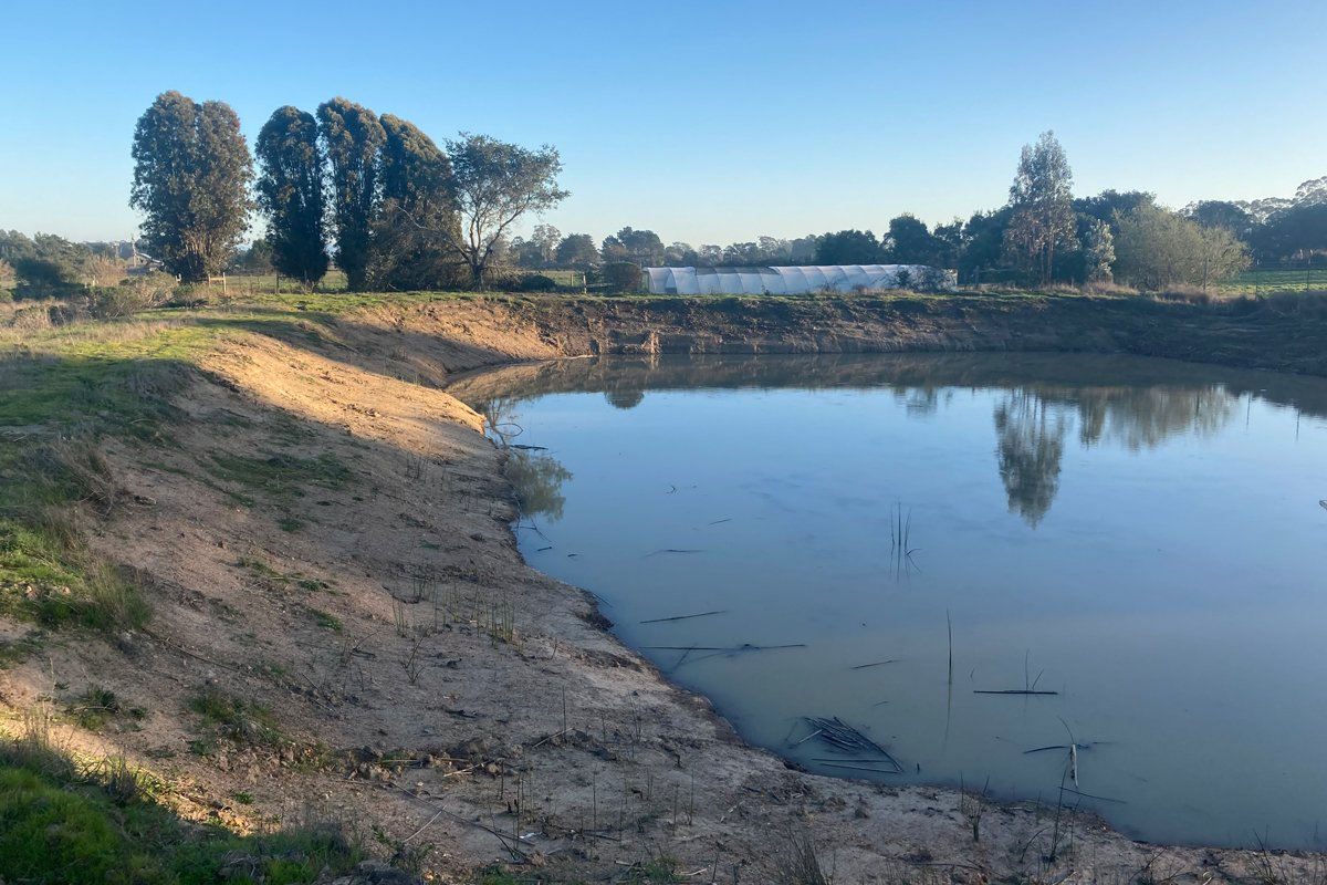 The irrigation pond at Shao Shan Farm, photographed in spring when the pond was at its fullest—Chang-Fleeman says the pond is now empty. (Photo courtesy of Scott Chang-Fleeman)