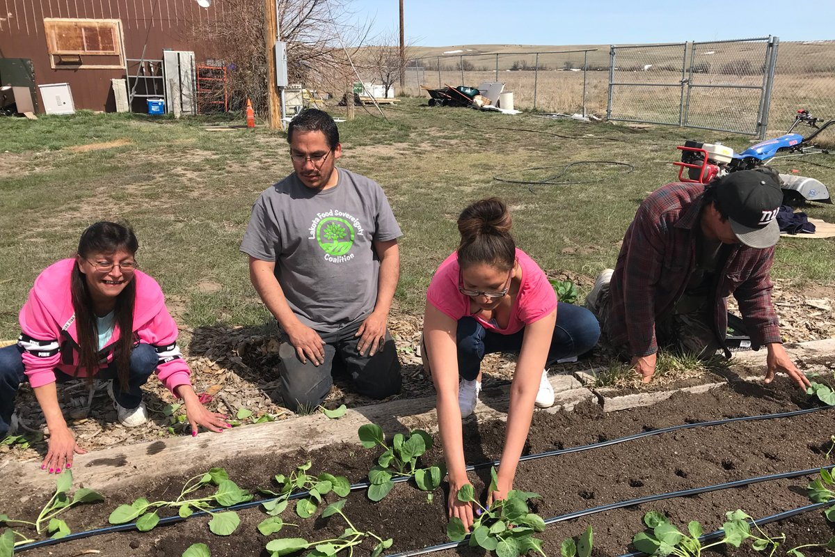 Tending a garden on the Pine Ridge Reservation as part of the Medicine Root Gardening Program. (Photo courtesy of the Oyate Teca Project)