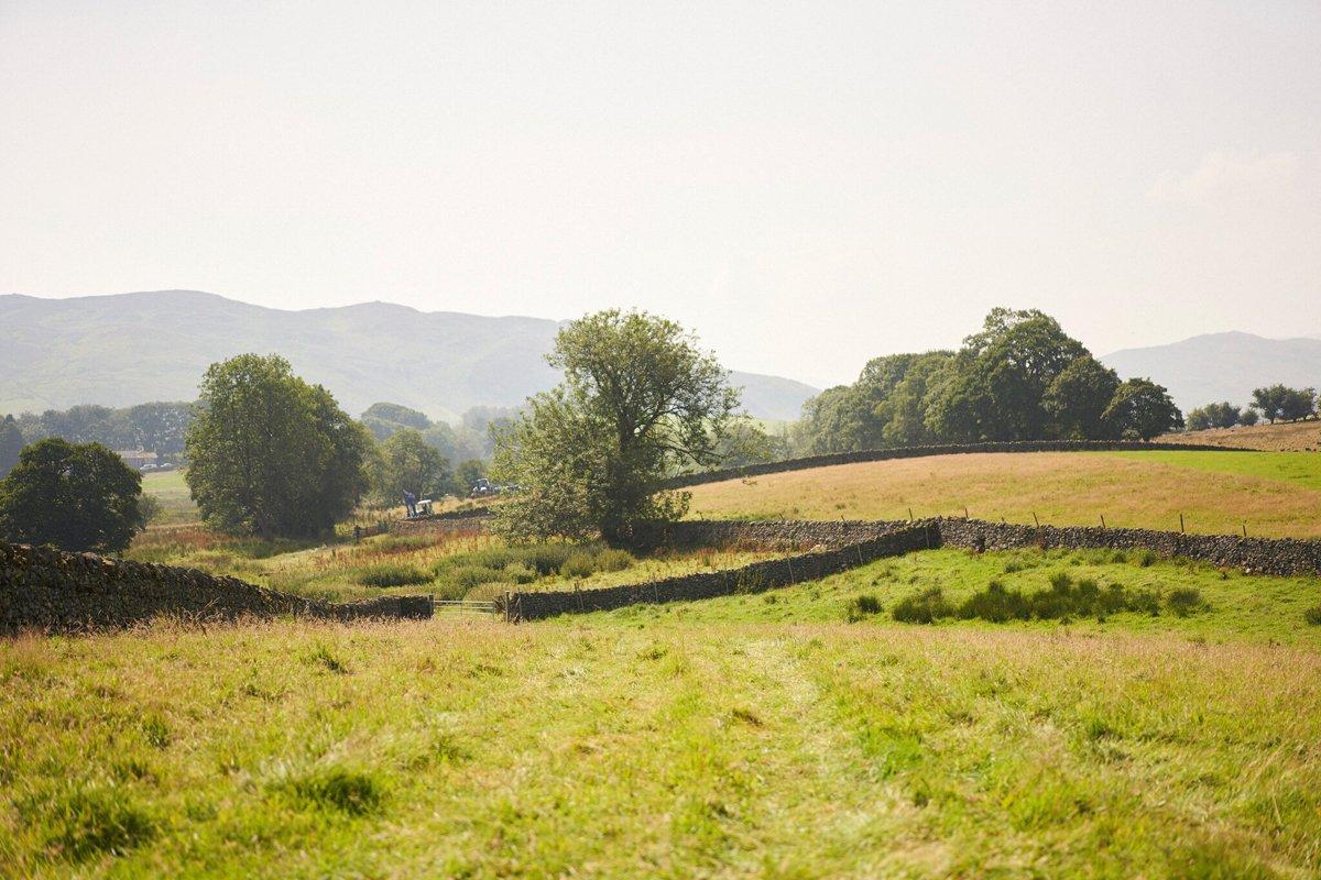 James Rebanks' farm. (Photo credit: Stuart Simpson, Penguin Books)