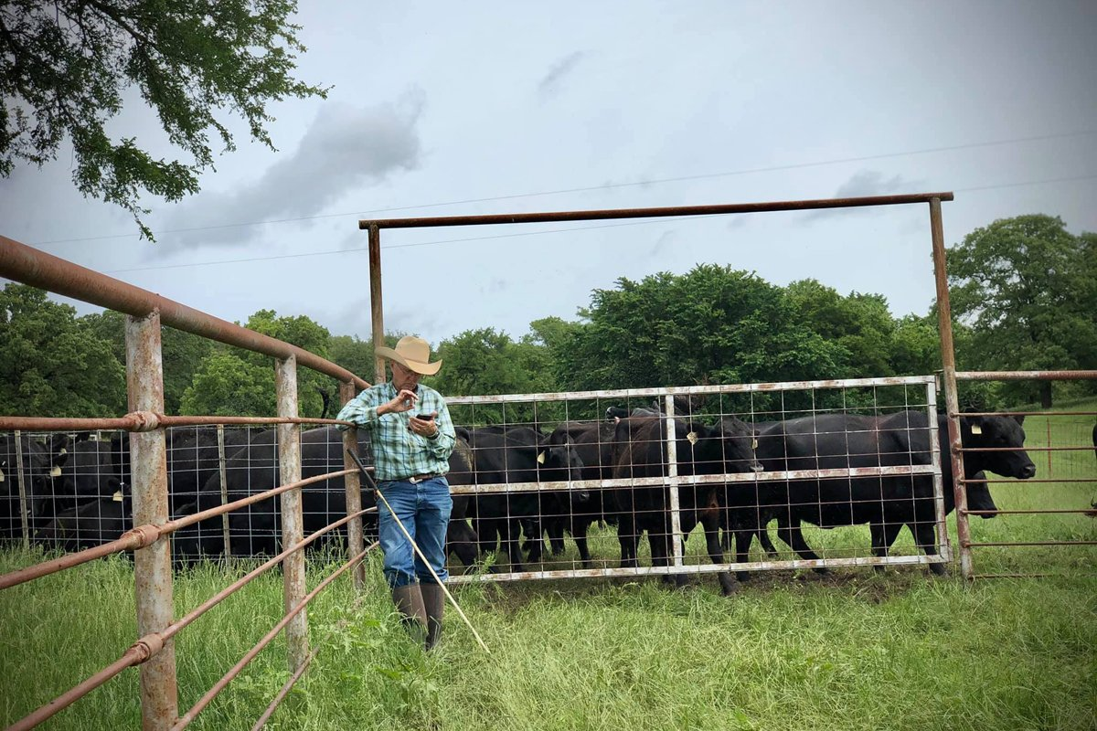 GC Ellis standing outside a gate on G-Bar-C Ranch with cattle in the background.