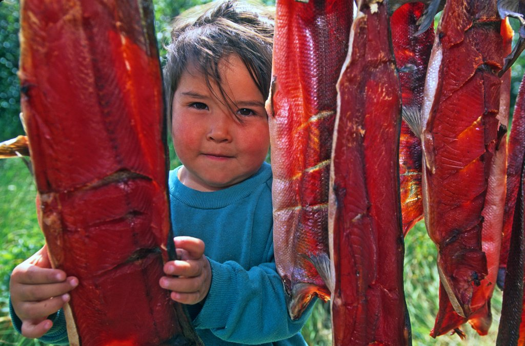 A Native Alaskan child stands at a salmon drying rack in 2006 in the Bristol Bay area. (Photo credit: Mark Emery)