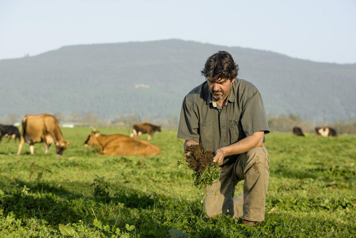 Blake Alexandre checking on the vitality of the soil on Alexandre Family Farm.